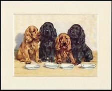 COCKER SPANIEL DOGS WAITED FOR FOOD CHARMING DOG PRINT MOUNTED READY TO FRAME