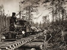 1925 Vintage CANADA Vancouver Island RAILROAD TRAIN Trees LOGGING Forest Photo