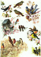 Rice Paper for Decoupage, Scrapbook Sheet, Craft Paper Vintage Birds