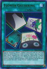 3x Flower Gathering - DRL3-EN040 - Ultra Rare YuGiOh NM DRL3 - Dragons of Legend