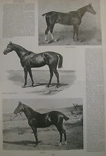 FOX HUNTING EQUESTRIAN HORSES ARTICLE 1892 HARPER'S WEEKLY PRINT