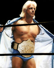 Pro Wrestler RIC FLAIR Glossy 8x10 Photo Wrestling WWF Print WWE Poster WCW
