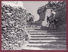 PHOTO GRECE - 1960 Iles grecques - MIKONOS - escalier à dos d'âne