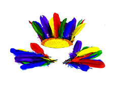 Large Feathers Assorted Colours (15g) Collage Arts and Crafts