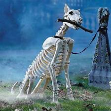 LifeLike Spike The Skeleton Dog on Leash Durable Plastic Halloween Outdoor Decor