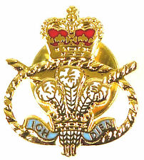 STAFFORDSHIRE REGIMENT LAPEL PIN BADGE