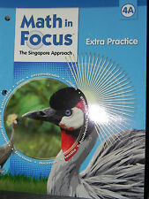 Houghton Mifflin Math in Focus Extra Practice 4th Grade Level 4 A Singapore Appr