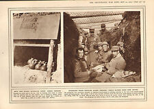 1915 WWI PRINT ~ FRENCH GRENADES ~ ENTRENCHED TROOPS UNDER WIRE NETTING