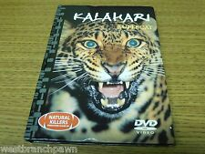 #10 Kalahari Supercat DVD / Book Natural Killers Predators Close Up Series