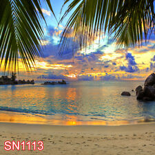 SUMMER BEACH OUTDOOR 10x10 FT CP PHOTO SCENIC BACKGROUND BACKDROP SN1113
