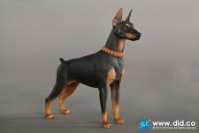 *Brand New* DID 1/6 Scale Black Doberman Pinscher with Brown Collar *US Seller*