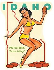 IDAHO   Pin-Up Gal    Vintage Style 1950's  Travel Decal Sticker