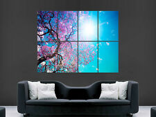 BEAUTIFUL TREE BLOSSOM DAZZLING SUN  WALL POSTER ART PICTURE PRINT LARGE  HUGE