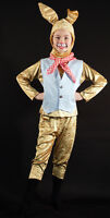 World Book Day-Brer-Peter Rabbit-March Hare-Stage Show-Fancy Dress Costume
