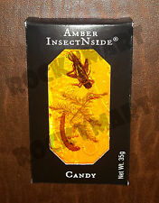 AMBER INSECT N SIDE Suckers Edible Bug Candy