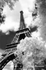 Parc Du Champ De Mars Poster! Paris Beauty Admirer's View Eiffel Tower France