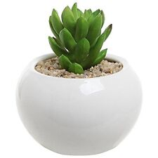3.5 Inch Small Round Modern White Ceramic Succulent Planter Pot - MyGift®, New,