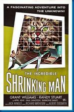 Incredible Shrinking Man The Movie Poster24in x 36in