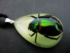 Real Scarab Beetle Glow in Dark resin Pendant Necklace China Insect
