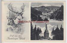 (107275) AK Gruß a.d. Teutoburger Wald, Lippische Schweiz, Hermannsdenkmal, 1941