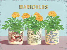 Marigolds Vintage Fleur Pots Domestique Jardin Cuisine Salle de bain,Large Métal