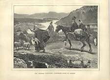 1871 las tierras altas occidentales Connemara va al mercado gansos y ovejas antiguo de impresión