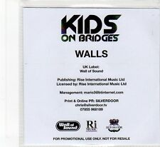 (FB4) Kids On Bridges, Walls - 2014 DJ CD