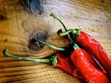 FOOD CHILI PEPPER RED HOT SPICY WOOD POSTER ART PRINT PICTURE BB39A
