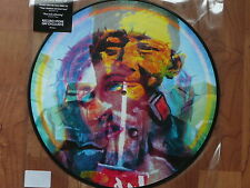 Record Store Day 2015 Manic Street Preachers - Holy Bible LP Picture Disc   RSD