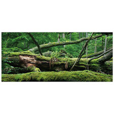 "All Living Things Forest Terrarium Cling Reptile Background large (36""L x 18""W)"