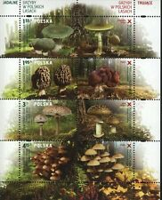 Mushrooms by Poland 2012 MNH Sheet of 8 stamps