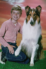 JON PROVOST UNSIGNED PHOTO - 5799 - LASSIE