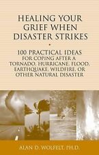 Healing Your Grief When Disaster Strikes: 100 Practical Ideas for Coping After a