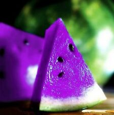 FD804 Rare Sweet Watermelon Seeds Fruit Garden Seed ~PurpleFree Shipping~10PCs .