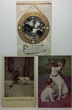 100+ years old postcards. Set of 3 featuring dogs. Divided back. Postmarked.