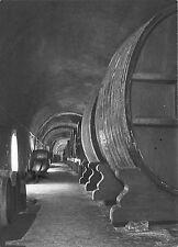 BR19908 Galerie des vins de reserve Moet and chandon maison epernay   France