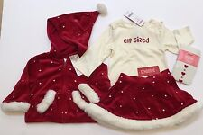 NWT Gymboree Mountain Cabin 12-18-24 Months Elf Sized Tee Hoodie Skirt & Tights