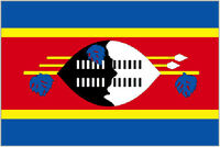 3' x 2' SWAZILAND FLAG Swazi South Africa African
