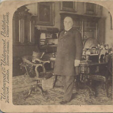 1900 STEREOVIEW OF PRESIDENT WILLIAM MCKINLEY IN THE WHITE HOUSE CABINET ROOM