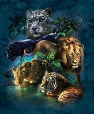 SUNSOUT JIGSAW PUZZLE BIG CAT PROWESS TAMI ALBA WILDLIFE 1000 PCS #52416
