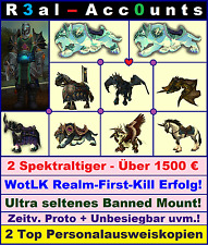 High End WoW Account 2x Spektraltiger|Realm-First-Kill|RARE Mounts|Person.-Kopie
