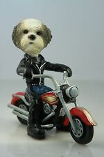 SHIH TZU MIXED SPORT CUT  ON A   MOTORCYCLE SEE ALL BREEDS & BODIES @ EBAY STORE