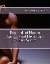 Essentials of Human Anatomy and Physiology: Urinary System by Evelyn J. Biluk...