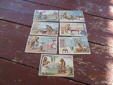 7 vintage postcard set 1907 weekdays bear for bear Wm S. Heal N.Y. embossed