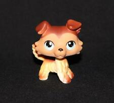Littlest Pet Shop COLLIE #58 Tan White Brown Dog Blue Eyes ALL PAWS DOWN VARIANT