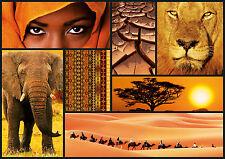 PUZZLE 1000 PIEZAS TEILE PIECES COLORES DE AFRICA COLOURS EDUCA 16293