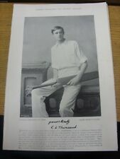 1895 Cricket: Famous Plate/Picture - Townsend, C L [Gloucestershire] - on revers