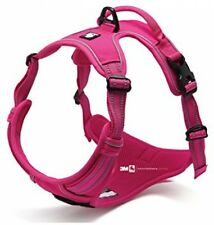 Front Range New 2016 True Love Design Dog Harness, No-Pull. 3M Reflective For