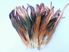 "25+ NATURAL BRONZE COPPER TIP ROOSTER COQUE TAILS LONG FEATHER 8""-10""L"