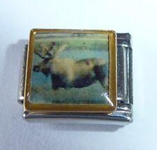 Moose encanto italiano-Wild Animal Ciervo Venado Elk-se adapta a todos 9mm Arrancador pulseras W93